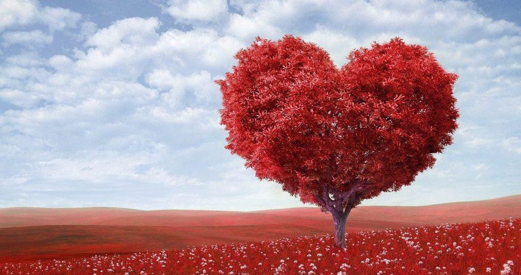 artistic blossom bright 207962 e1554896290622